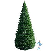 Большие уличные елки