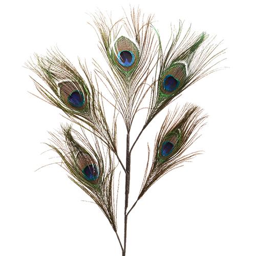 Декор Перо павлина зеленое 50x28cм