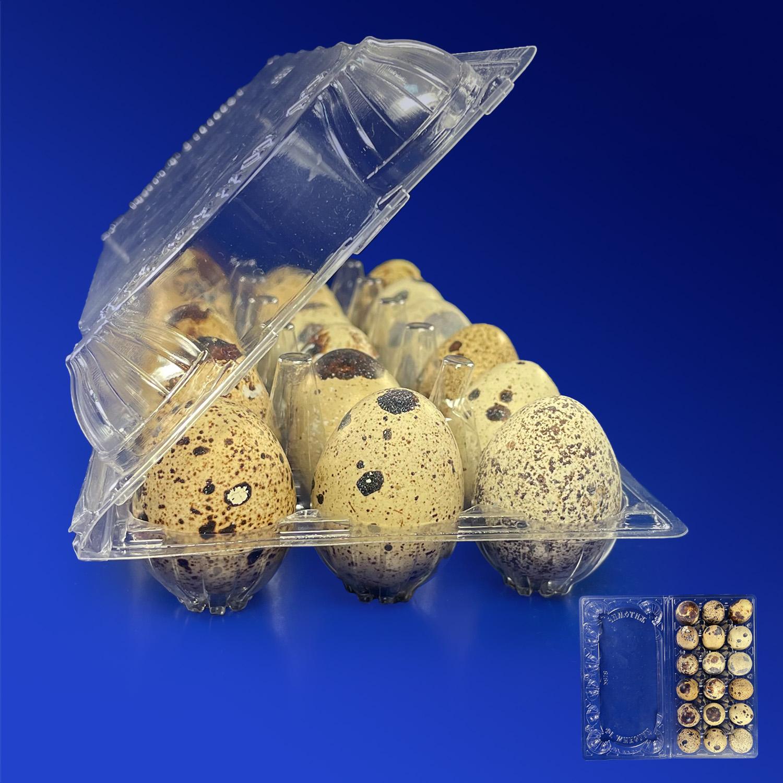 Упак бокс для перепел яиц 19,2х10,2х4,2см 18ячеек d2,9см